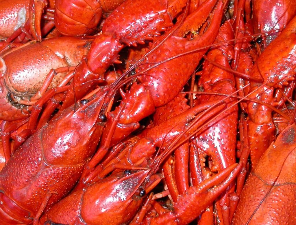 boiled_crawfish