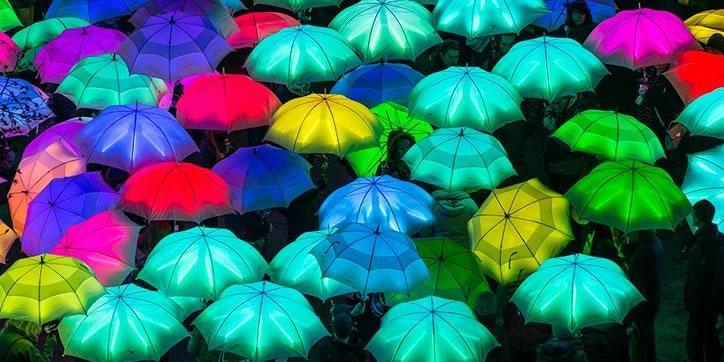 umbrellaella